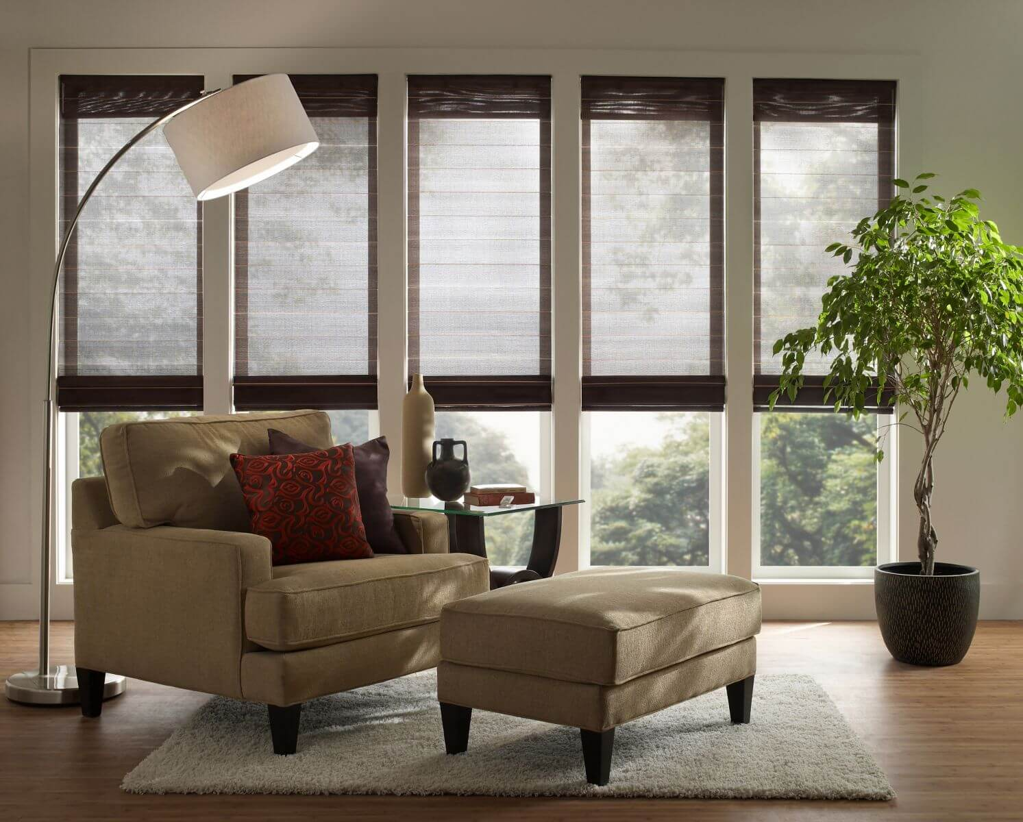 Lutron Blinds